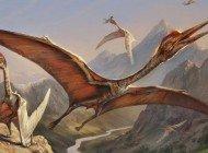 Gobi Çölünde Dev Pterozor Kalıntıları Bulundu