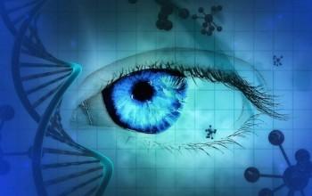 Körlüğe Karşı Gen Terapisi Yakında Gerçek Olabilir