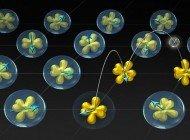 Valans Bileşiklerindeki Kayıp Elektronların Gizemi Çözüldü