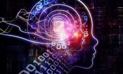 Yeni Bir Teori: Esneklik, İnsan Zekâsının Kalbidir
