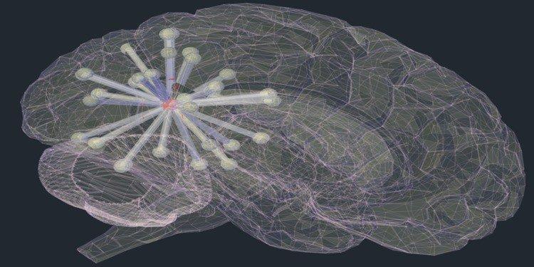 Alzheimer Beyinde Nasıl Yayılıyor?