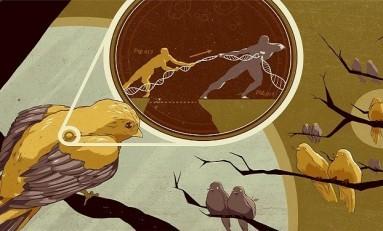 Hücre-içi Genetik Mücadeleler Sonucunda Yeni Türler Oluşabiliyor