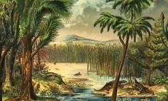 Yağmur Ormanlarının Yok Oluşunun Omurgalı Evrimine Etkisi